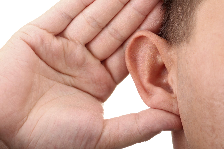 Best Hearing Aids Reviews Hearing Loss Help